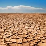 dry-land